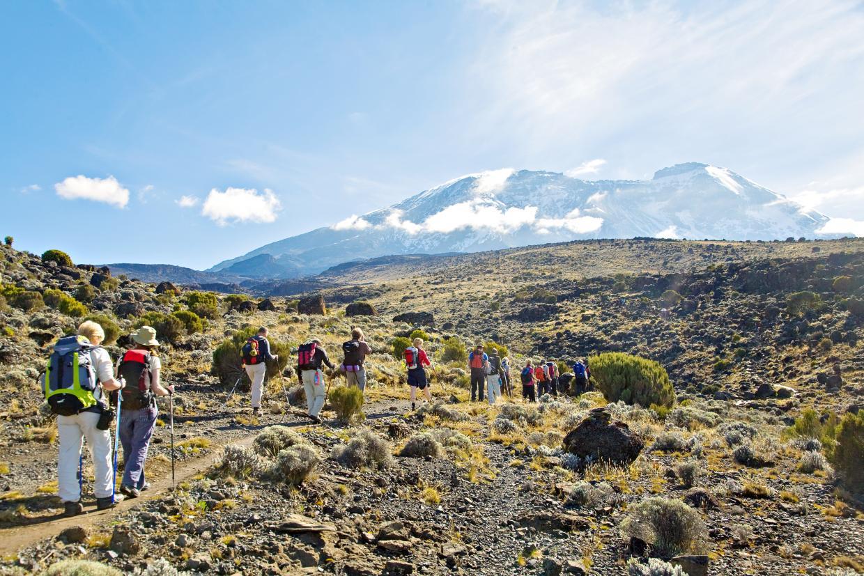 Rongai-kilimanjaro